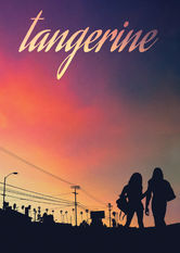 Netflix: Tangerine | Fresh out of a stint in jail, transgender prostitute Sin-Dee and her pal Alexandra hit the crazy streets of LA to get revenge on her fickle pimp.