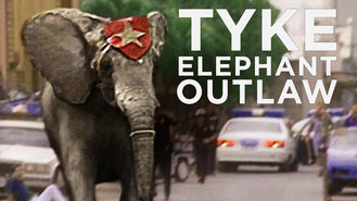 Netflix box art for Tyke Elephant Outlaw